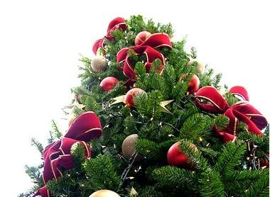 διαφορετικο χριστουγεννιατικο δεντρο