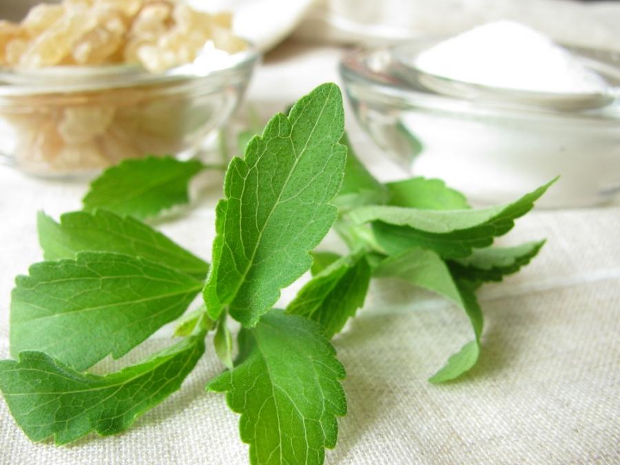Stevia και σακχαρώδης διαβήτης