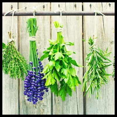 bouquets-fresh-herbs