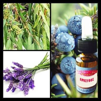 juniper-lavender-eucalyptus