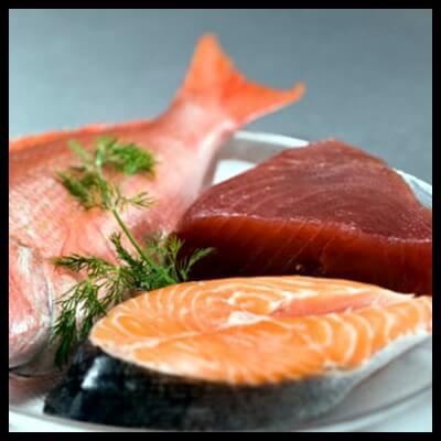 Ψάρια και Σολομός