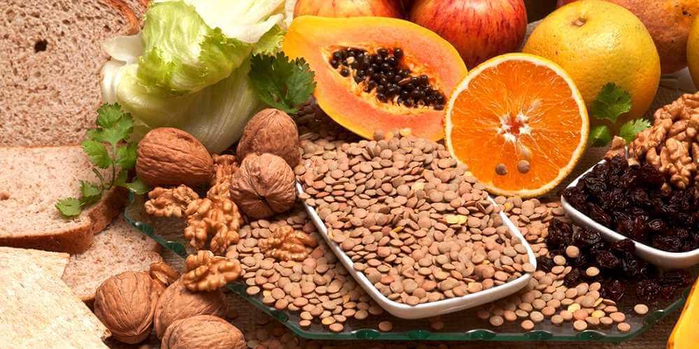 Φυτικές ίνες και πεπτικό σύστημα