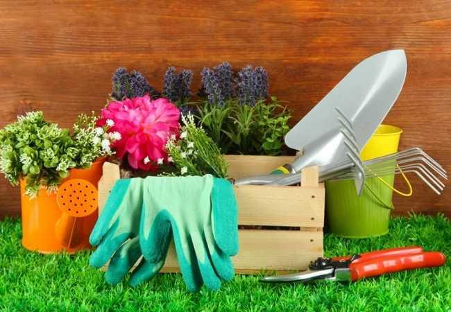 Ήρθε η Άνοιξη! Ώρα για το ξεχορτάριασμα του κήπου!