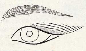 Μακιγιάζ για στρογγυλά, αλλά «ανασηκωμένα» μάτια