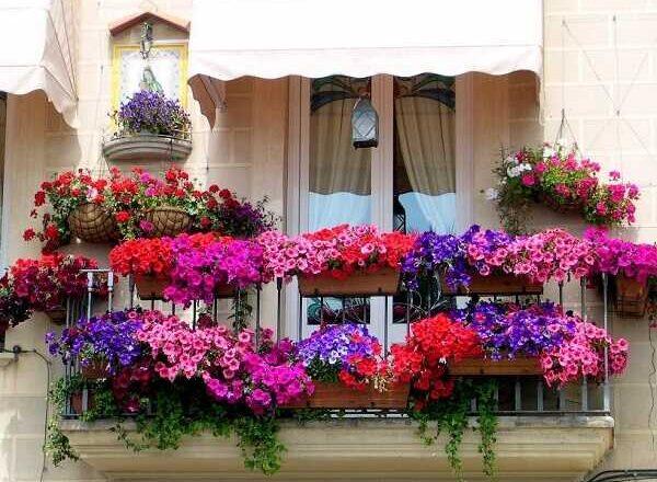 Κάνε το μπαλκόνι σου να μοιάζει σαν μικρός κήπος!